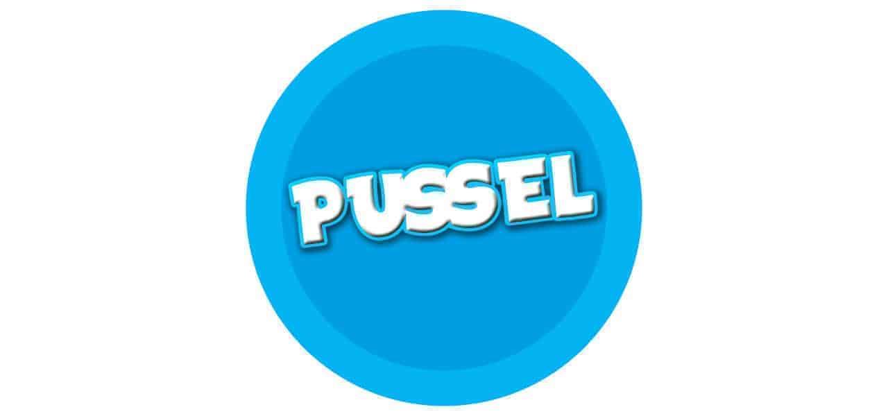 PUSSEL