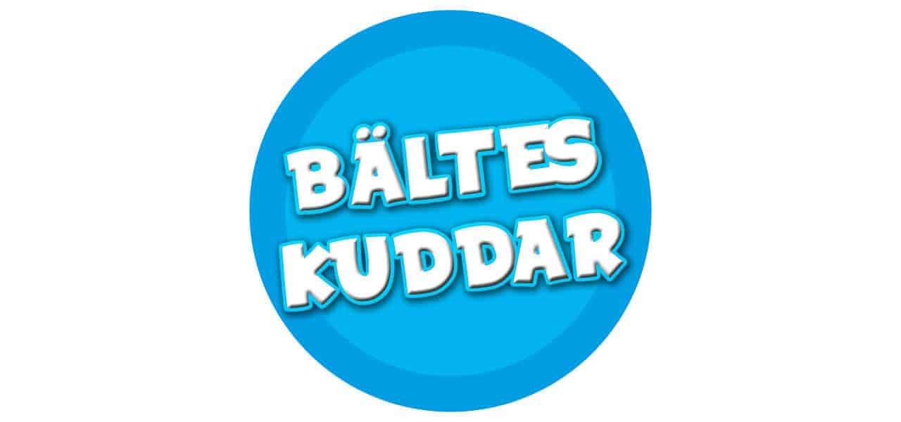 BÄLTESKUDDAR