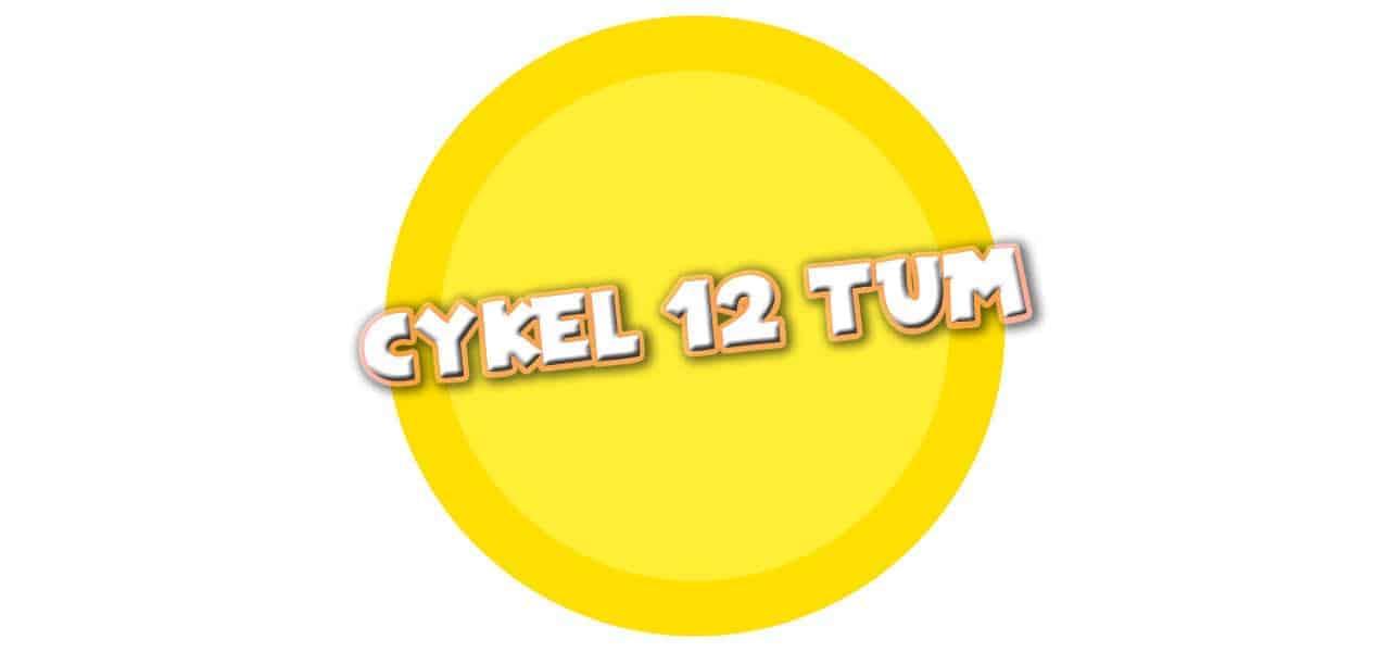 CYKEL 12TUM