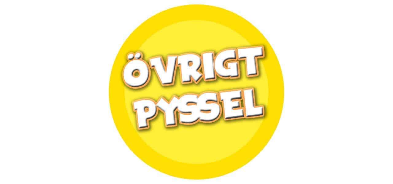 ÖVRIGT PYSSEL
